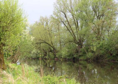 Jezioro Czerskie
